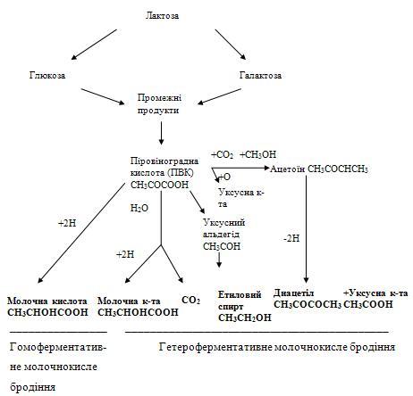 """,""www.milkbranch.ru"